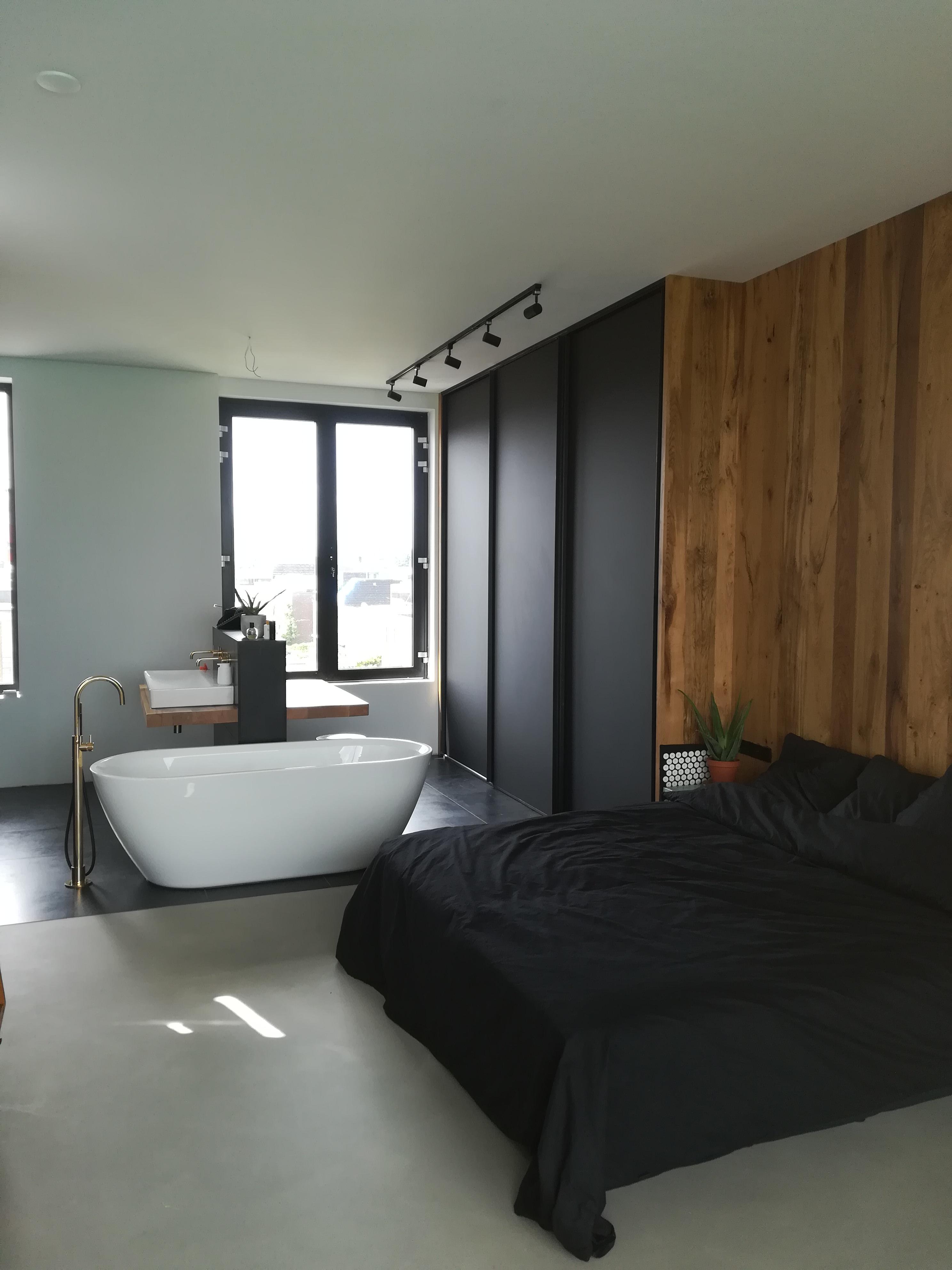 Wandkast Met Bed.Slaapkamer Met Wandkasten En Open Badkamer 2d W